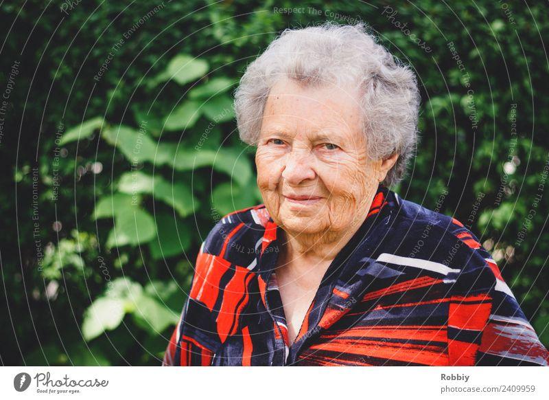 Großmütterchen V Weiblicher Senior Frau Großmutter 60 und älter weißhaarig alt natürlich grün rot Lächeln Ruhestand Altersversorgung Hautfalten Lebensalter