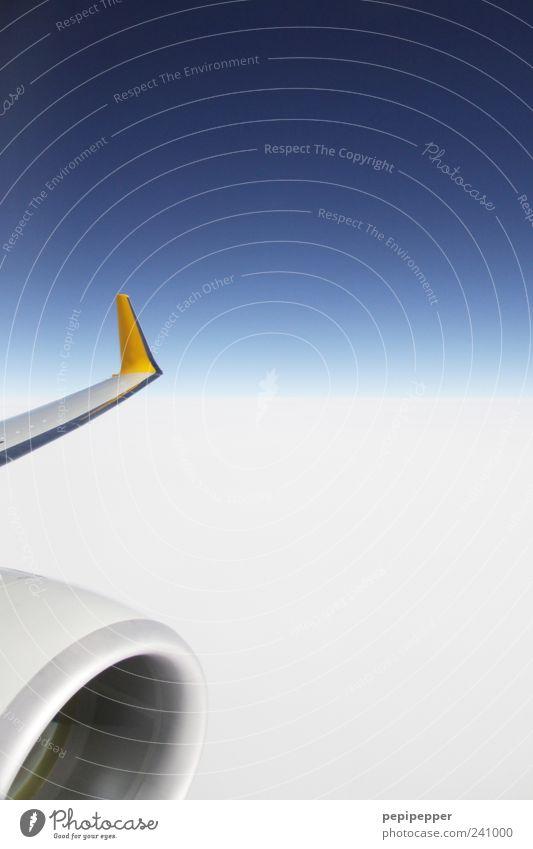 über den wolken... Luftverkehr Himmel Horizont Flugzeug Flugzeugausblick fliegen blau weiß Farbfoto mehrfarbig Außenaufnahme Detailaufnahme Luftaufnahme