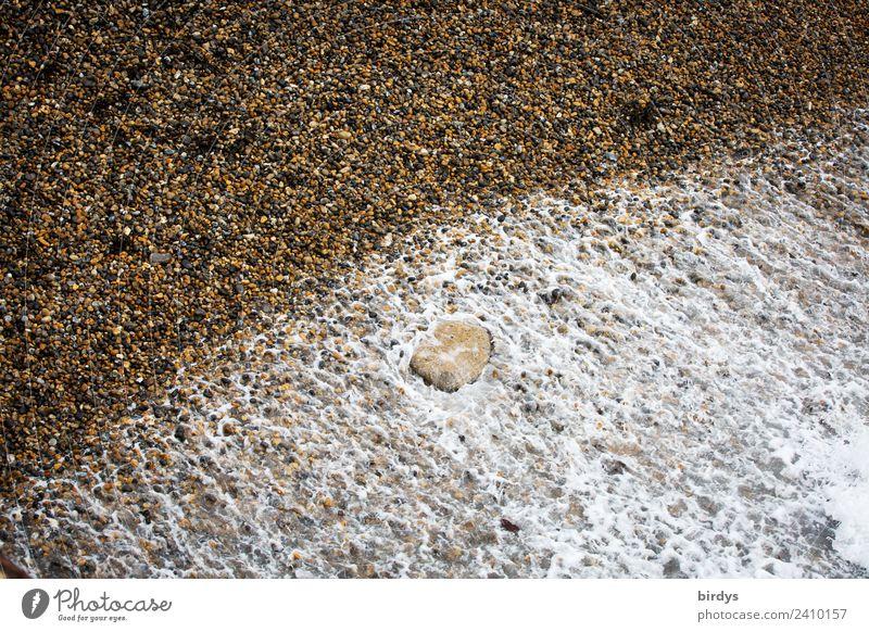 Strandsequenz Urelemente Wasser Küste Meer Bewegung authentisch einfach Flüssigkeit natürlich braun gelb grau weiß Natur Symmetrie Wandel & Veränderung Schaum