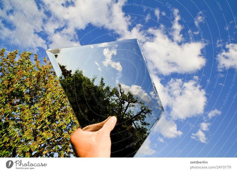 Spiegel im Himmel Spiegelbild Reflexion & Spiegelung Hand festhalten Ast Baum Erholung Garten Himmel (Jenseits) Schrebergarten Kleingartenkolonie Natur Pflanze