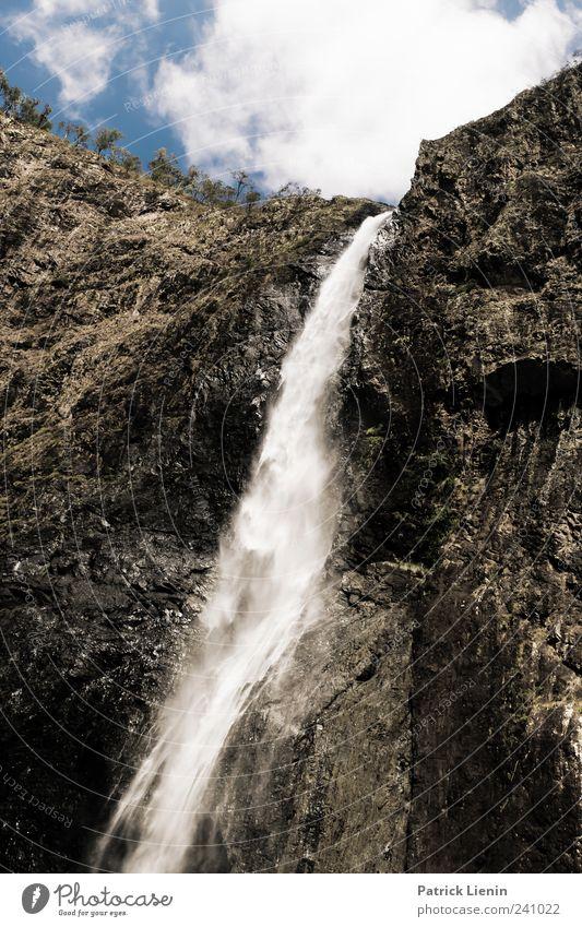 Wooroonooran Himmel Natur Wasser Ferien & Urlaub & Reisen schön Baum Pflanze Sommer Wolken Umwelt Felsen Reisefotografie Tourismus Urelemente Schönes Wetter Wasserfall