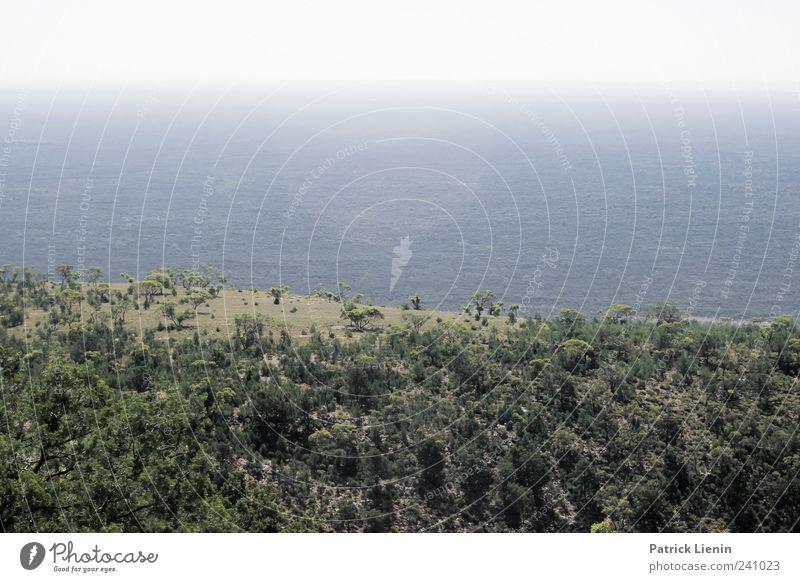 Outback Himmel Natur blau Ferien & Urlaub & Reisen schön Baum Pflanze Sommer Wolken Wald Ferne Umwelt Landschaft Freiheit Luft Wetter