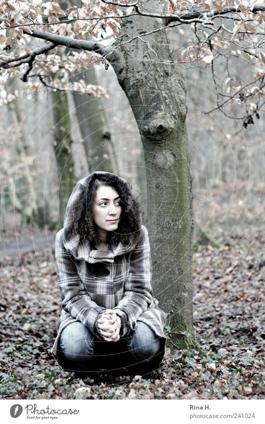WinterWald ( ein Fräulein sitzt im Walde) Mensch Natur Jugendliche Hand schön Baum Blatt Erwachsene Wald Herbst Junge Frau 18-30 Jahre beobachten Jeanshose Locken langhaarig