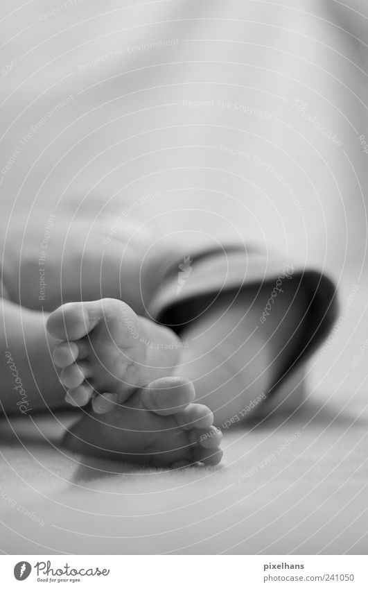 Samtpfoten Mensch weiß ruhig schwarz klein Fuß Baby liegen natürlich maskulin schlafen Bekleidung Stoff Hautfalten nah genießen