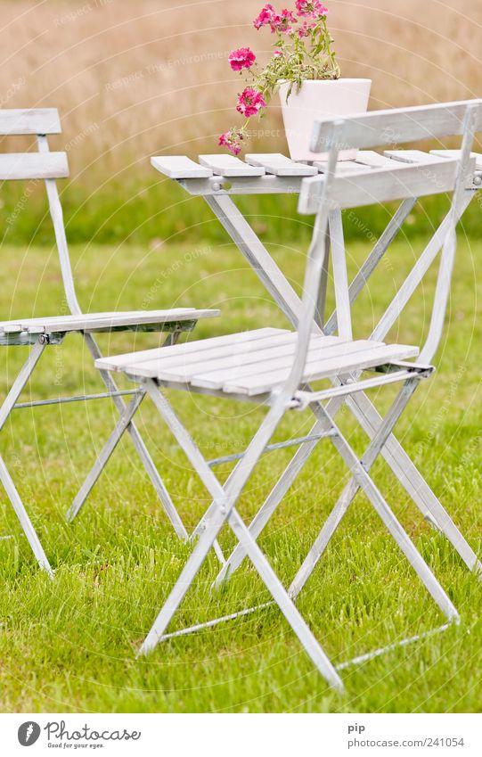 rastplatz Stuhl Tisch Topfpflanze Sommer Schönes Wetter Blume Garten Park Wiese grün rosa Freizeit & Hobby ruhig Gartenmöbel Idylle Freundlichkeit Erholung Gras