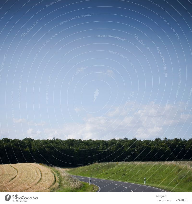 Einfach immer weiter Himmel Natur Ferien & Urlaub & Reisen Sommer Wolken Wald Umwelt Landschaft Straße Wege & Pfade Freiheit Horizont Feld Verkehr gefährlich