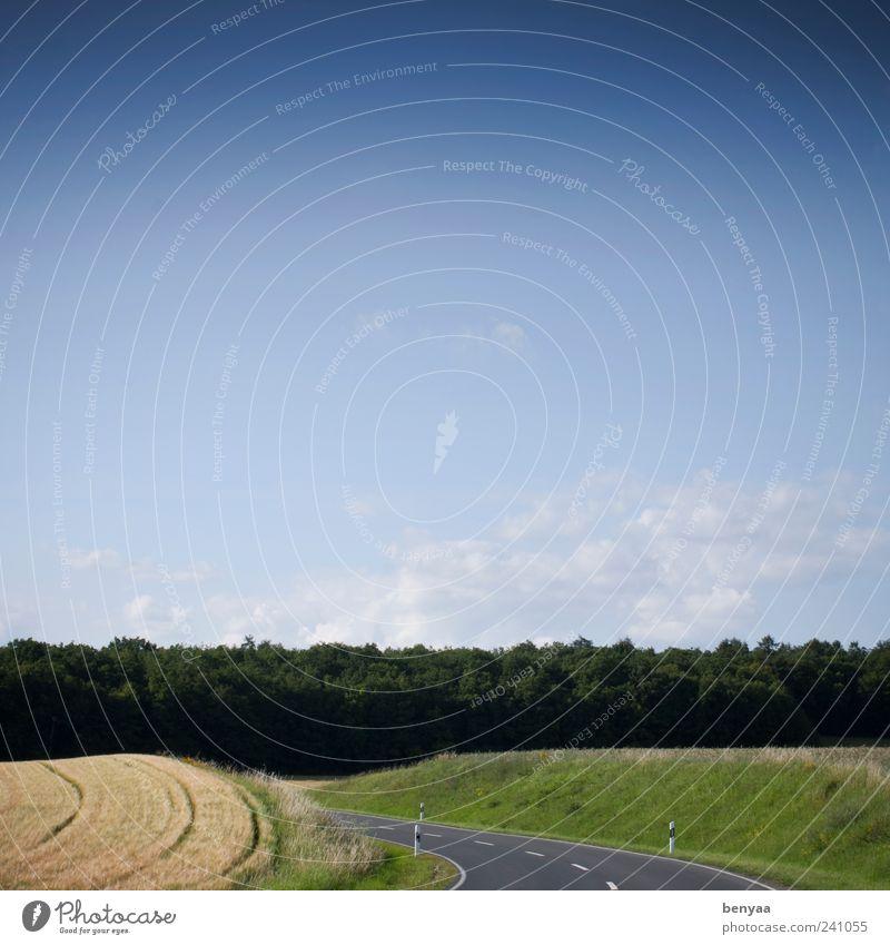 Einfach immer weiter Umwelt Natur Landschaft Wolken Horizont Sommer Schönes Wetter Feld Verkehr Verkehrswege Straße Wege & Pfade Vorfreude Neugier gefährlich