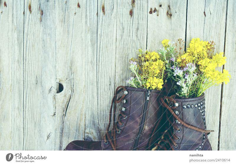 Alte Stiefel mit Blumenfüllung auf Holzuntergrund Natur Pflanze Wildpflanze Topfpflanze Mode Bekleidung Leder alt ästhetisch authentisch einfach frisch Billig