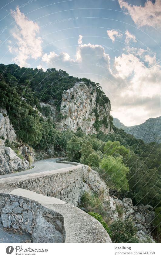 Mallorca X Natur schön Himmel Baum grün Pflanze Wolken Straße Wald Wand grau Stein Mauer Landschaft Felsen Sträucher