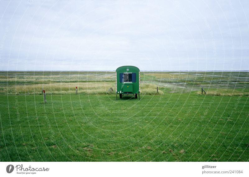 Waggon auf der Insel Langeoog Himmel Natur Wasser Ferien & Urlaub & Reisen Pflanze Sommer Ferne Umwelt Landschaft Wiese Gras Küste Freiheit Luft Horizont Erde