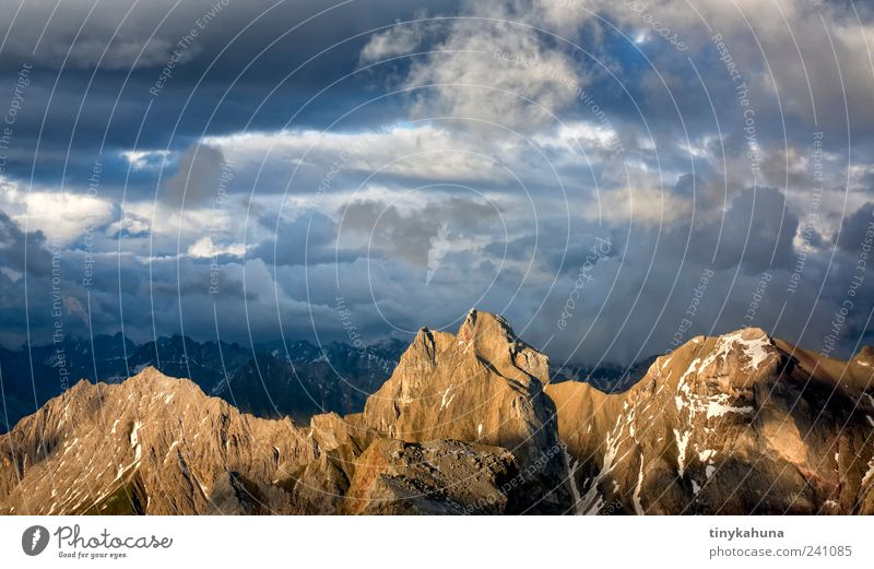 Freispitze Natur Ferien & Urlaub & Reisen Einsamkeit Erholung Landschaft Berge u. Gebirge oben Freiheit Stimmung hoch ästhetisch leuchten Spitze einzigartig