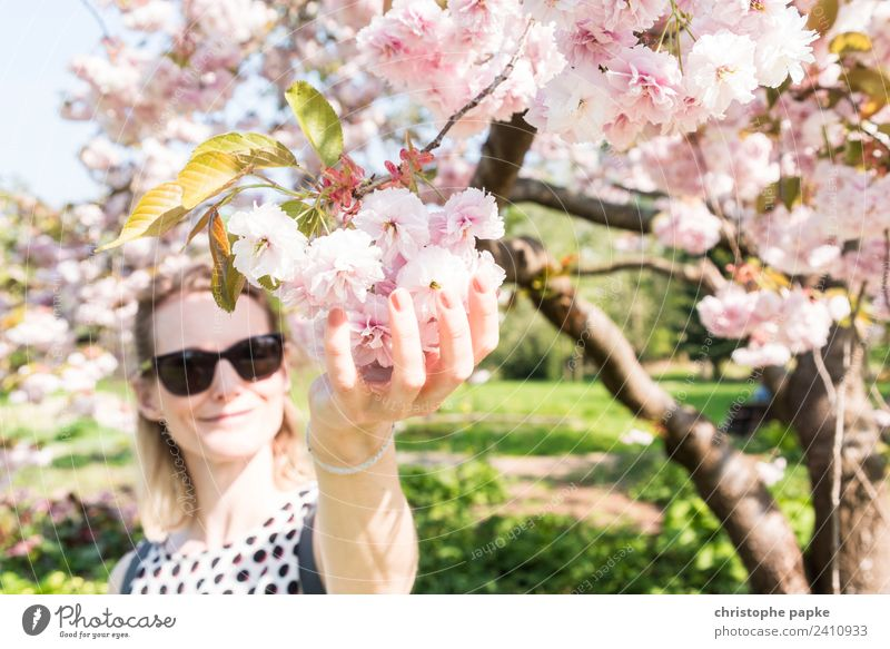 Den Frühling fest im Griff Mensch Natur Jugendliche Junge Frau Baum Erwachsene Blüte natürlich feminin Park blond Schönes Wetter Blühend berühren Kirschblüten