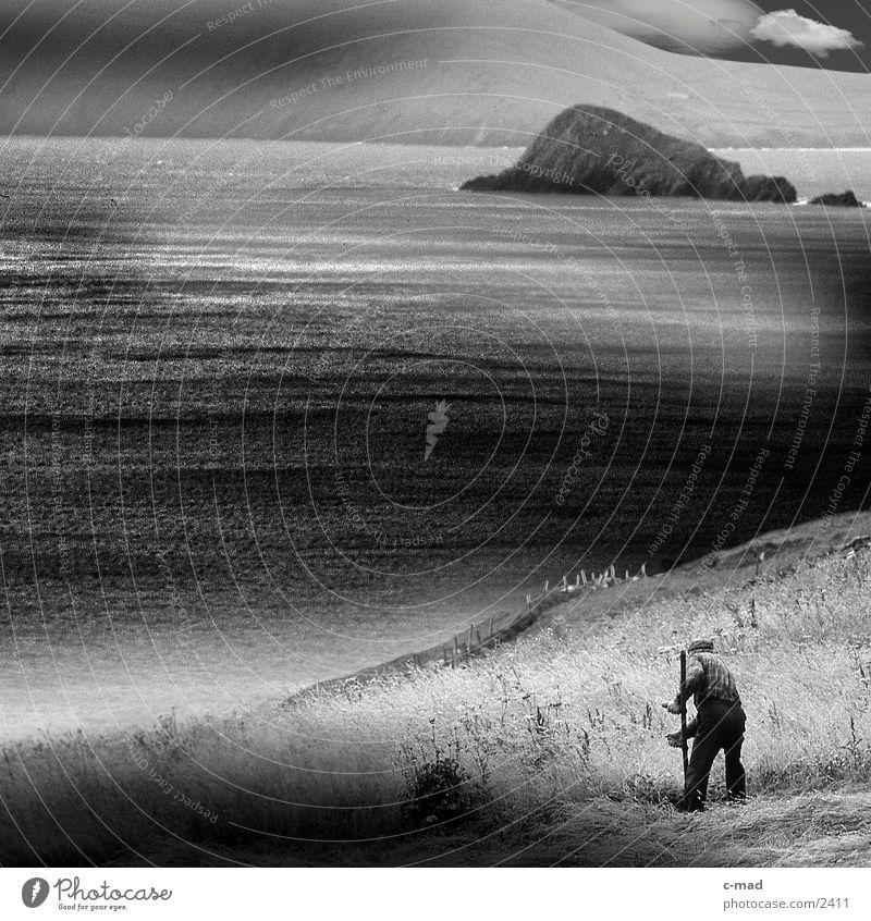 Mähender Bauer am Meer Wasser Wolken Arbeit & Erwerbstätigkeit Wiese Gras Stimmung Landwirt Schwarzweißfoto Klippe Republik Irland Sense rasenmähen