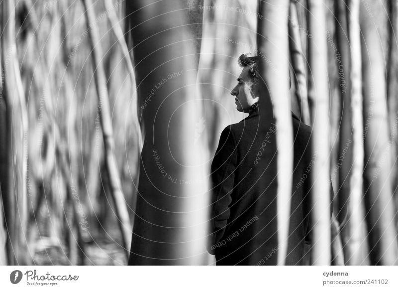 Beobachtung Lifestyle elegant Stil Wohlgefühl Erholung ruhig Ausflug Freiheit Umwelt Natur Baum Wald Mantel ästhetisch Einsamkeit entdecken geheimnisvoll
