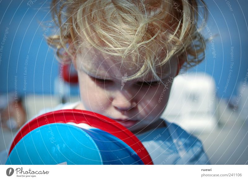 Wasndasn? Spielen Sommer Sommerurlaub Strand Meer lernen Mensch maskulin Kind Junge 1 1-3 Jahre Kleinkind Sand beobachten ästhetisch blau rot Freude Neugier