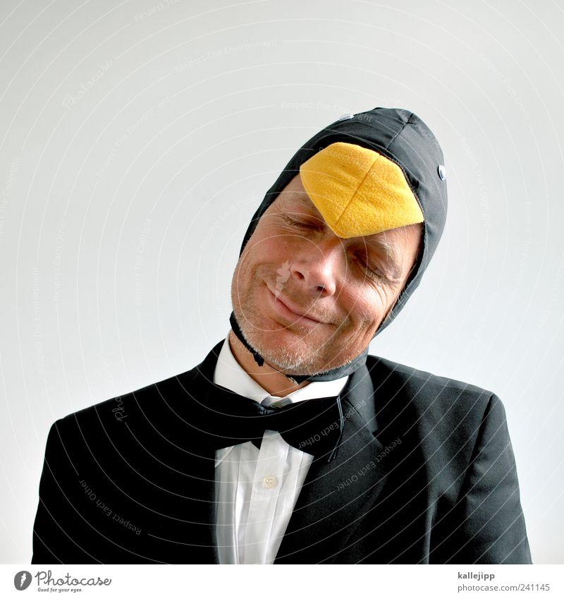 nur fliegen wäre schöner Mensch Mann Tier Gesicht Kopf Erwachsene lustig Zufriedenheit Vogel elegant maskulin Karneval Lächeln Anzug skurril grinsen
