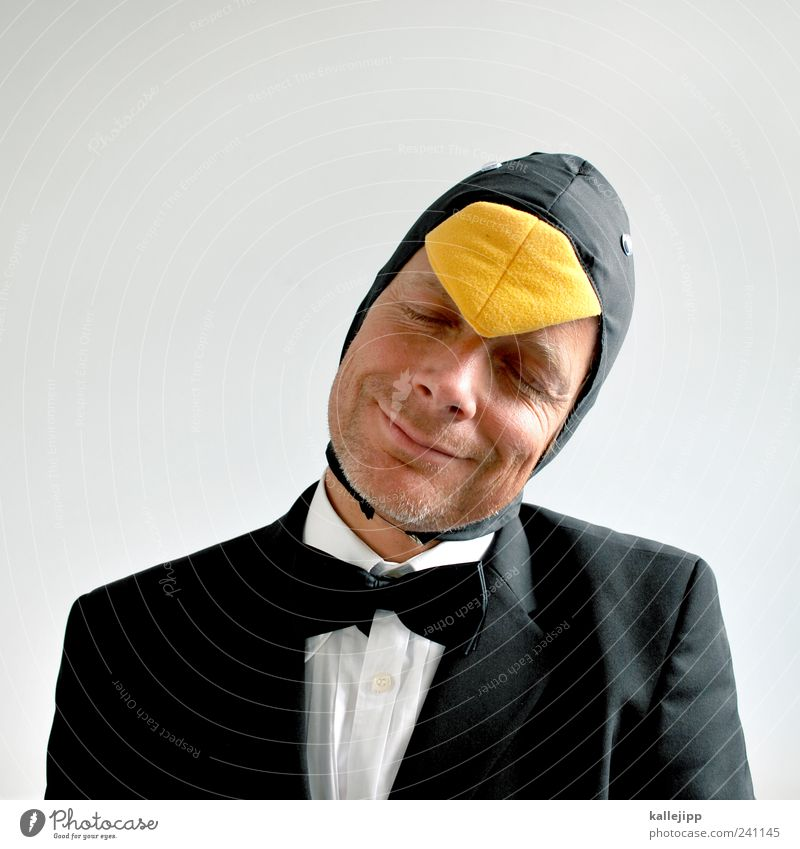 nur fliegen wäre schöner Mensch maskulin Mann Erwachsene Kopf Gesicht 1 30-45 Jahre Tier Vogel Pinguin Anzug Smoking elegant Karneval Karnevalskostüm