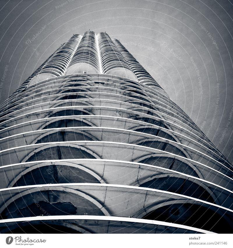 Hochhausknochen Fassade hoch kalt modern grau Chicago Beton rund Strukturen & Formen Schwarzweißfoto Außenaufnahme Menschenleer Froschperspektive Architektur