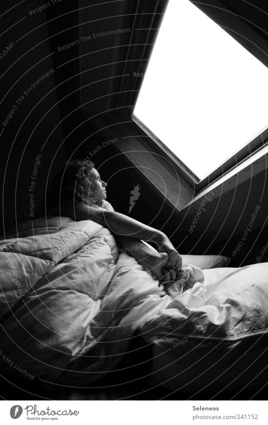 Wer macht heut den Kaffee? Häusliches Leben Wohnung Haus Bett Raum Schlafzimmer Mensch feminin Frau Erwachsene Kopf Arme 1 Mauer Wand Fenster Dach sitzen