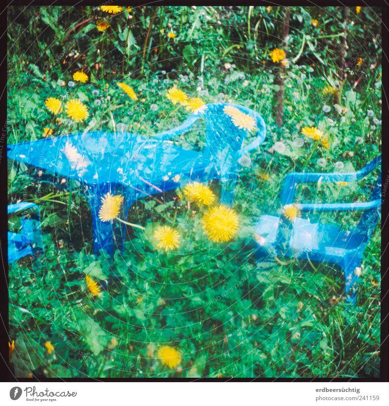 Kinder-Garten Stuhl Tisch Leben Natur Pflanze Gras Sträucher Grünpflanze Wildpflanze Löwenzahn sitzen stehen Wachstum klein niedlich trashig blau grün Idylle
