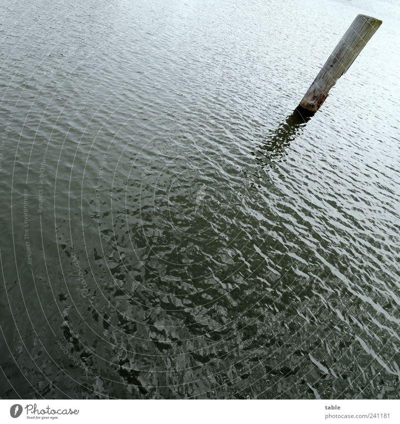ziemlich schräg Umwelt Natur Urelemente Wasser Sommer Wellen Meer See Anlegestelle Holzpfahl Pfosten stehen dunkel kalt nass trist blau grau schwarz Einsamkeit