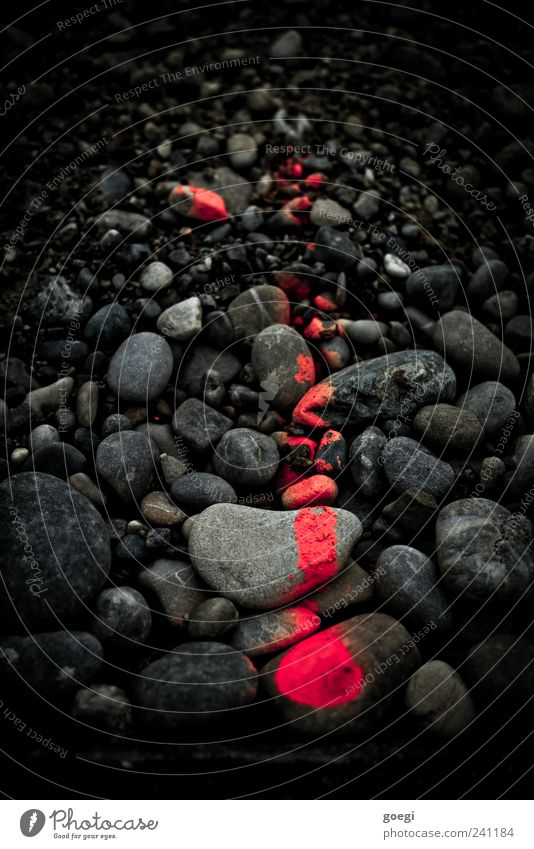 RAL 3024 III Stein Zeichen Schilder & Markierungen Linie Pfeil grau rot schwarz Kieselsteine kennzeichnen Baustelle Messung Farbfoto Außenaufnahme Menschenleer