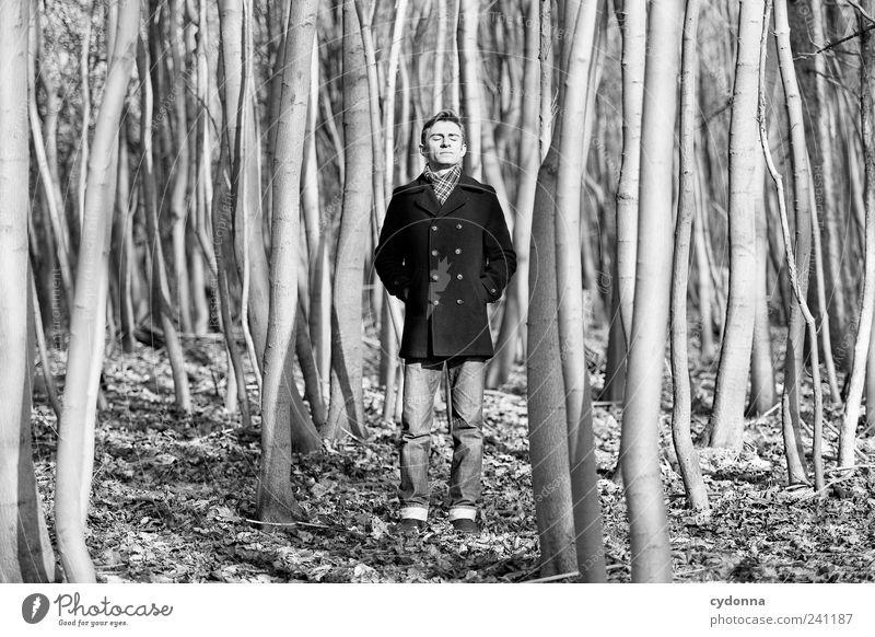 Still stehen elegant Wohlgefühl Erholung ruhig Freiheit wandern Mensch Junger Mann Jugendliche 18-30 Jahre Erwachsene Umwelt Natur Baum Wald Mantel Einsamkeit