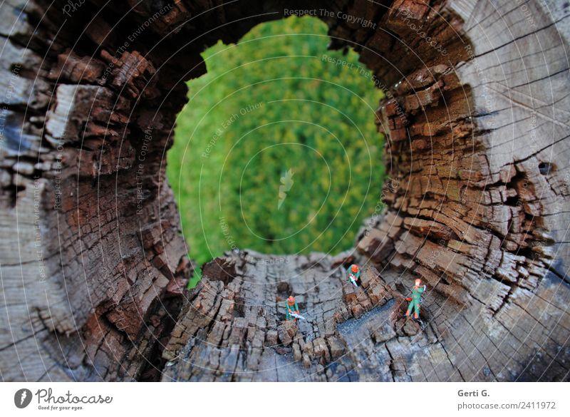 ganz schön hohl Arbeit & Erwerbstätigkeit Beruf Handwerker Gartenarbeit Waldarbeiter Baumpfleger Agrartechniker Landwirtschaft Forstwirtschaft Maschine Säge