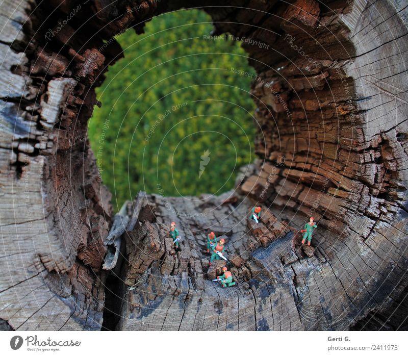 ja sind wir im Wald hier... Handwerker Baumpfleger Waldarbeiter Holzfäller Landwirtschaft Agrarprodukt Agrartechniker Forstwirtschaft Kettensäge Säge Maschine