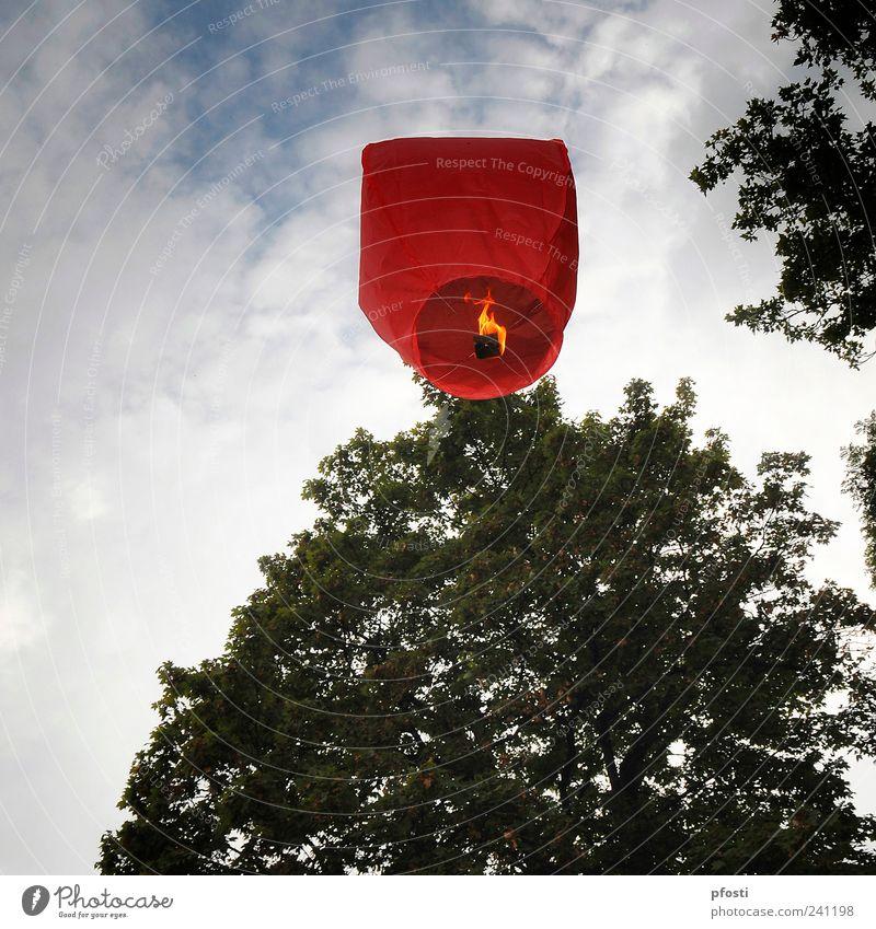 Wo geht die Reise hin? Himmel Baum rot Freude Blatt Wolken Freiheit Glück träumen Kunst Park Feste & Feiern fliegen Fröhlichkeit Luftverkehr leuchten