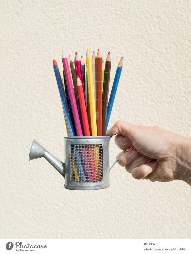 Vielfalt, bunte Bleistifte in Spielzeuggießkanne Reichtum Bildung Wissenschaften Erwachsenenbildung Schule lernen Studium Hand Schreibwaren Schreibstift