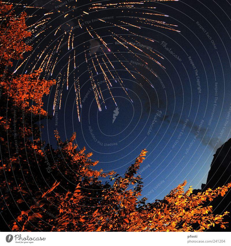 Salut! Natur Baum Freude Feste & Feiern glänzend ästhetisch Fröhlichkeit Feuer Rauchen Kitsch Silvester u. Neujahr Rauch Lebensfreude Veranstaltung Feuerwerk Wolkenloser Himmel