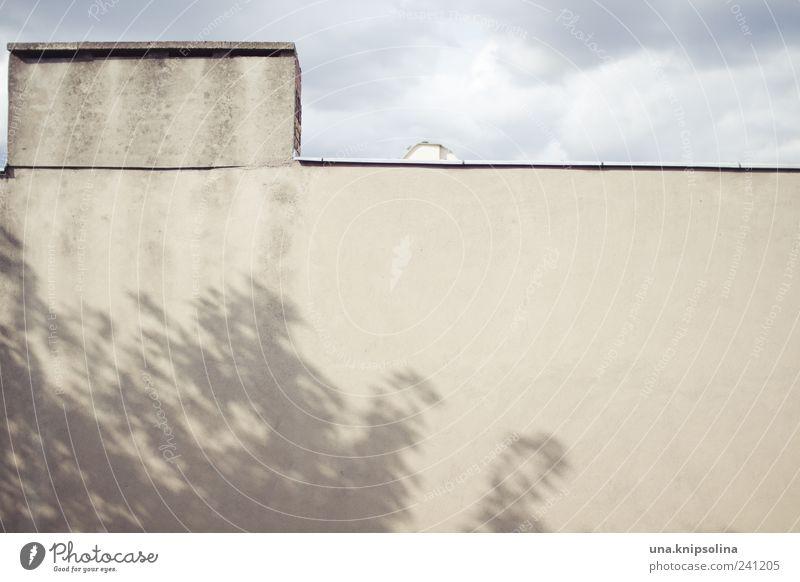 -–_ _ Himmel Baum Blatt Haus Umwelt Wand Architektur Bewegung Gebäude Mauer Fassade Wind einfach Schönes Wetter Dach eckig