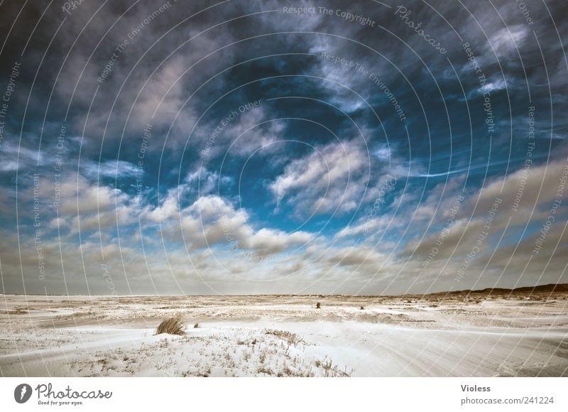 Spiekeroog  ....wisps of clouds Natur Landschaft Sand Himmel Strand Nordsee Erholung Wolken Wolkenhimmel blau Farbfoto Außenaufnahme Licht Schatten
