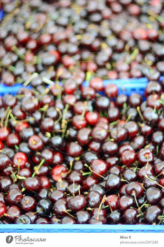 100 000 Kirschen rot Sommer Ernährung Lebensmittel Frucht frisch süß Appetit & Hunger lecker Bioprodukte saftig Vegetarische Ernährung sauer Marktstand