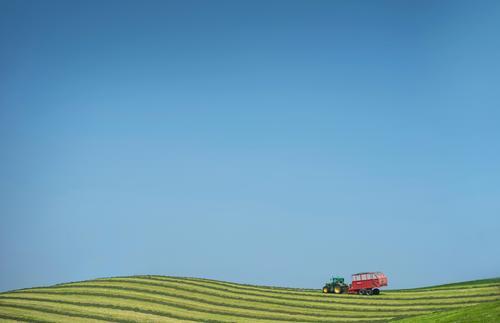 Landwirtschaft Himmel Natur Ferien & Urlaub & Reisen Sommer Pflanze Sonne Erholung Ferne Umwelt Wiese Tourismus Lebensmittel Freiheit Horizont Verkehr Feld