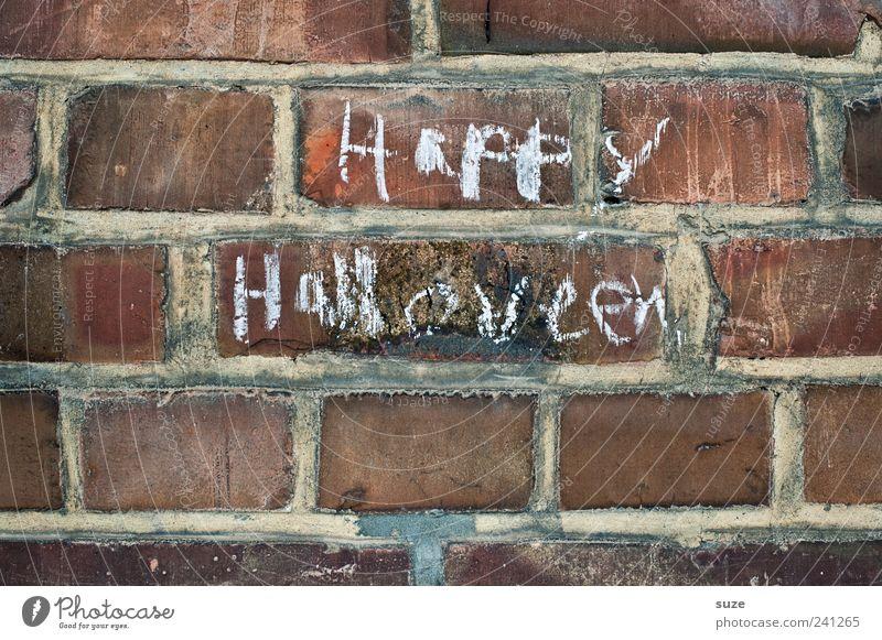Buuuh Halloween Mauer Wand Backstein Schriftzeichen Fröhlichkeit Kreide Backsteinwand Typographie Handschrift Schmiererei Farbfoto Gedeckte Farben Außenaufnahme