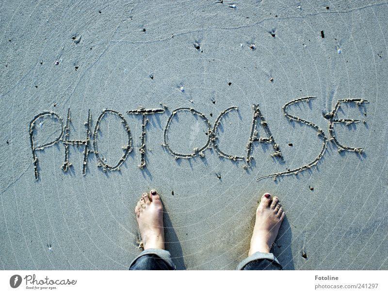 Photocase ist überall! Umwelt Natur Urelemente Erde Sand Sommer Küste Strand nass natürlich Barfuß Fuß Stein Strukturen & Formen Muster Farbfoto Gedeckte Farben