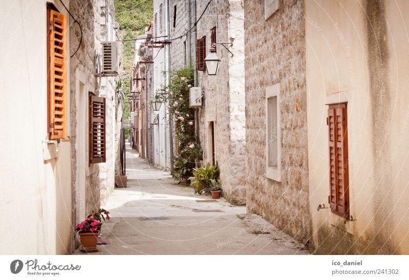 Ston III - enge Gassen in Kroatien alt Ferien & Urlaub & Reisen Einsamkeit Haus gelb Fenster Wand grau Mauer braun Fassade Ausflug Tourismus Europa einfach heiß