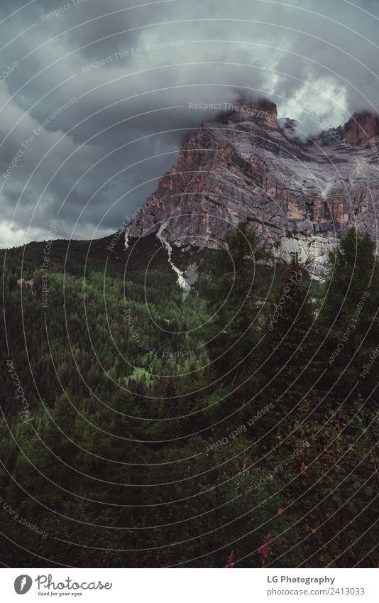 Dolomiten Norditalien Winter Berge u. Gebirge Landschaft Himmel Wolken Wetter See authentisch schön Italien Aussicht trentino südtirol Alpenseen Alpenmorgen