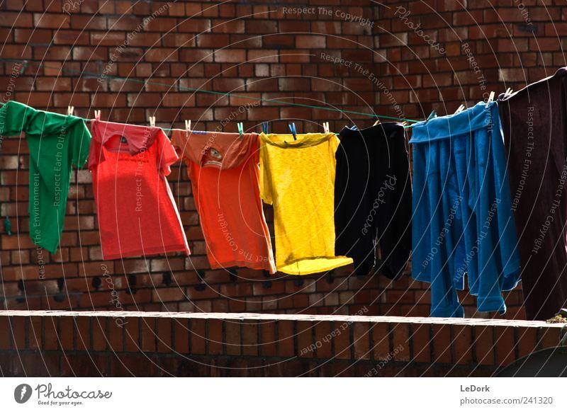 clothes line Häusliches Leben Wäscheleine bevölkert Hinterhof Bekleidung T-Shirt Pullover Backstein Duft Reinigen Sauberkeit weich blau gelb grün gewissenhaft