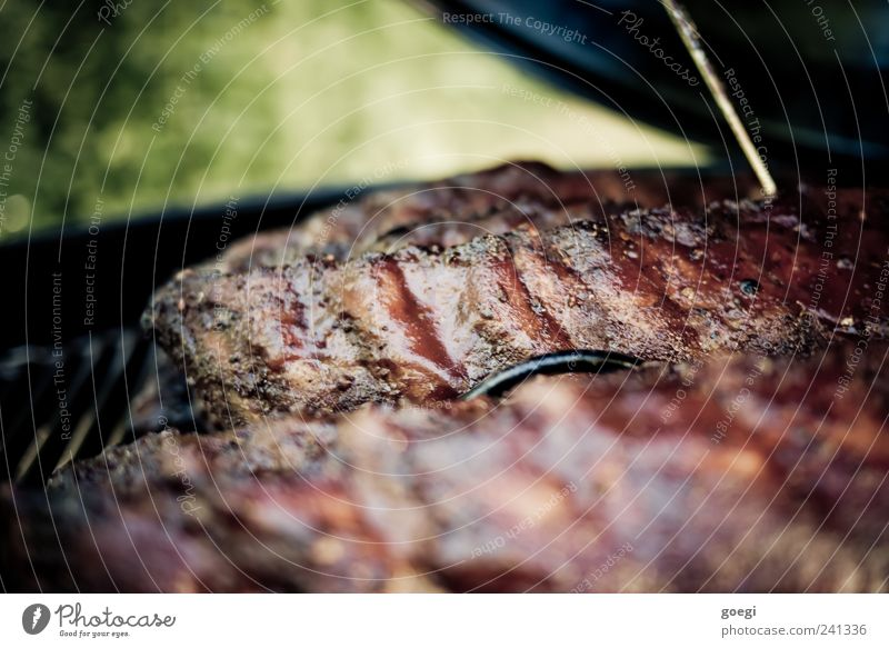 low and slow I Lebensmittel Fleisch Schweinefleisch Spareribs Rippen Ribs Slowfood Grillen Duft Appetit & Hunger geräuchert Farbfoto Außenaufnahme Nahaufnahme