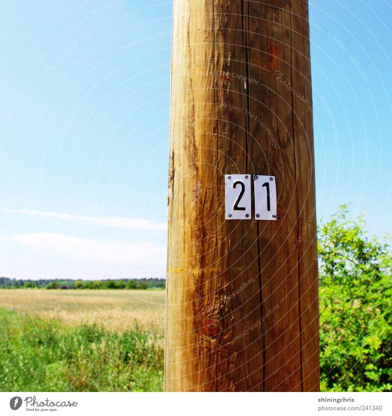 21 Himmel Natur blau Ferien & Urlaub & Reisen grün Sommer ruhig Landschaft Holz Freiheit Feld Schilder & Markierungen Ausflug Sträucher Ziffern & Zahlen Schönes Wetter