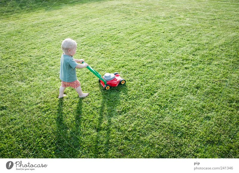 rasend mähen Rasenmäher maskulin Kind Kleinkind Arme Beine 1 Mensch 1-3 Jahre Gras Garten Wiese T-Shirt Shorts Spielen klein lustig grün Leben Kindheit einzeln
