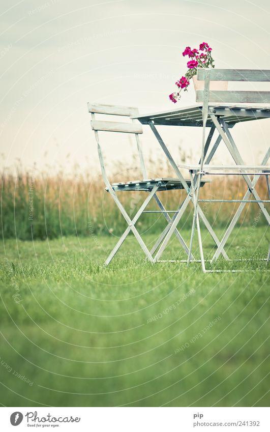 biergartenstühle ohne bier Himmel Blume grün Sommer ruhig Einsamkeit Wiese Gras Garten Landschaft rosa frei Tisch retro Stuhl Idylle