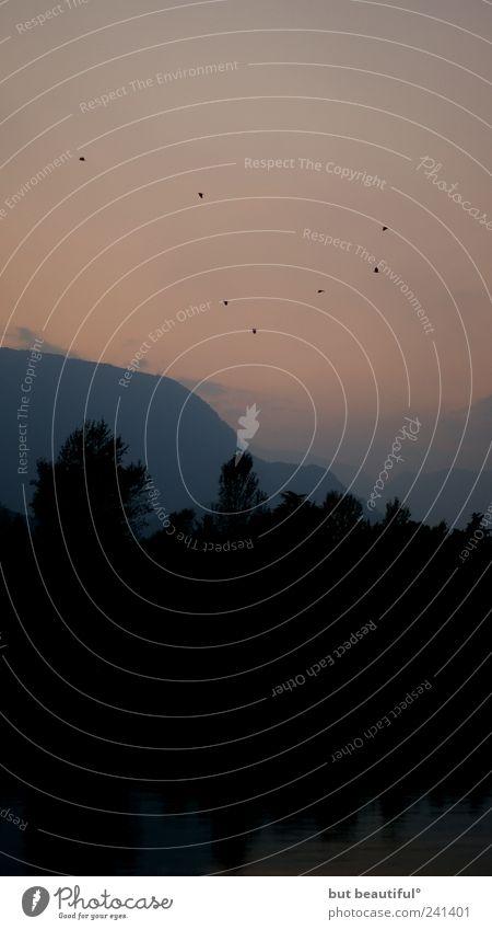 krabat° Natur Himmel Herbst See Landschaft Luft Umwelt Sehnsucht Warmherzigkeit Hügel Schönes Wetter Lago Maggiore