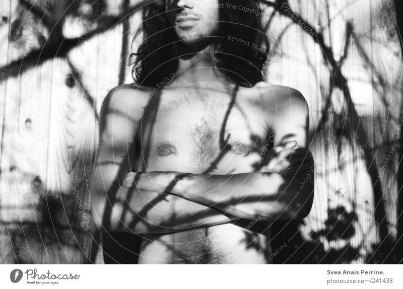 gezeichnet. maskulin Haare & Frisuren Brust Arme Hand 1 Mensch 18-30 Jahre Jugendliche Erwachsene Pflanze Baum Mauer Wand schwarzhaarig langhaarig Locken