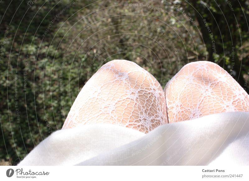 2weite Haut weiß Wiese feminin Garten sitzen verrückt Perspektive einzigartig Kleid weich nah dünn Rock hängen Strumpfhose hocken