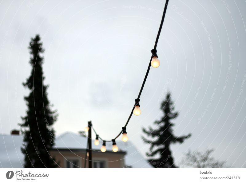 Lichterkette Schnee Baum frieren träumen grau weiß ruhig Glühbirne Tanne Haus Himmel vorweihnachtszeit leuchten Nadelbaum Kabel Fenster Strommast Farbfoto
