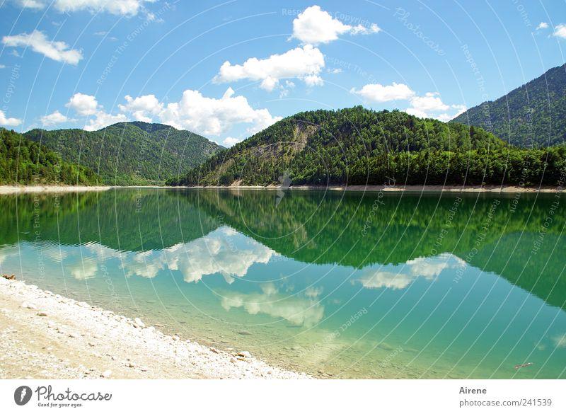 Spiegelberge Natur Wasser schön Himmel weiß grün blau Sommer ruhig Wolken Wald Berge u. Gebirge ästhetisch Alpen Seeufer Symmetrie